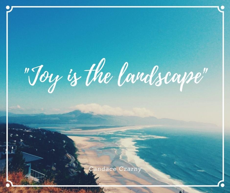 joy is the landscape
